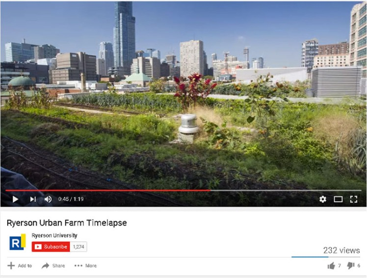 Ryerson_Urban_Farm_Timelapse