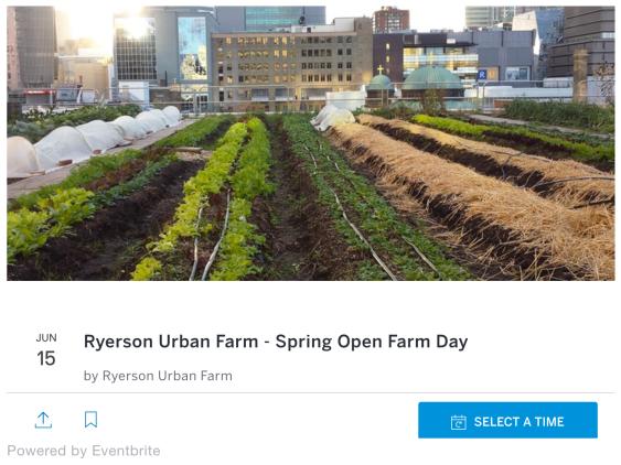 Spring Open Farm